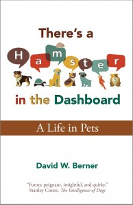 There's a Hamster in the Dashboard – A life in Pets