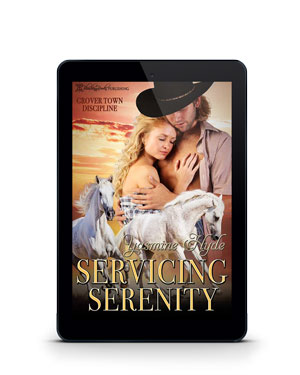 Servicing Serenity - Never Experienced Before